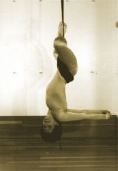 http://www.yogaprops.com/images/products/inversionslingprofile170.jpg